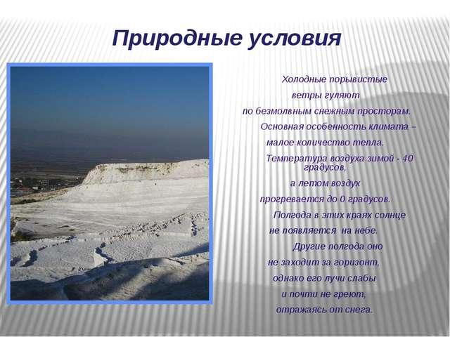 Холодные порывистые ветры гуляют по безмолвным снежным просторам. Основная о...
