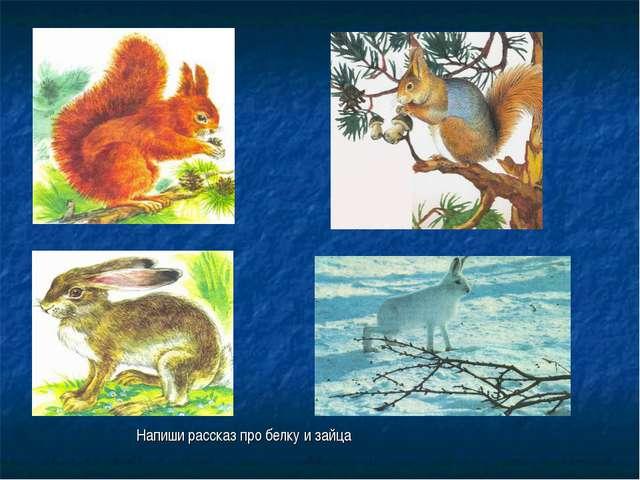 Напиши рассказ про белку и зайца