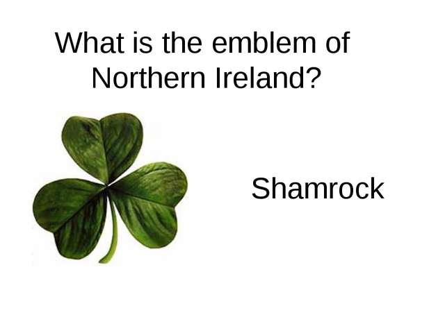What is the emblem of Northern Ireland? Shamrock