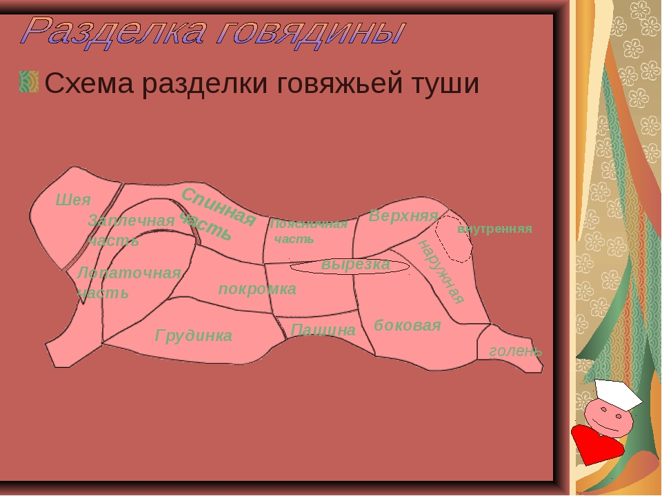 Схема разделки говяжьей туши