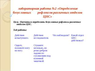 лабораторная работа №2 «Определение безусловных рефлексов различных отделов