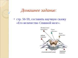 Домашнее задание: стр. 56-59, составить научную сказку «Его величество Спинно
