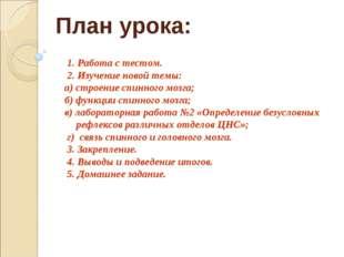 План урока: 1. Работа с тестом. 2. Изучение новой темы: а) строение спинного