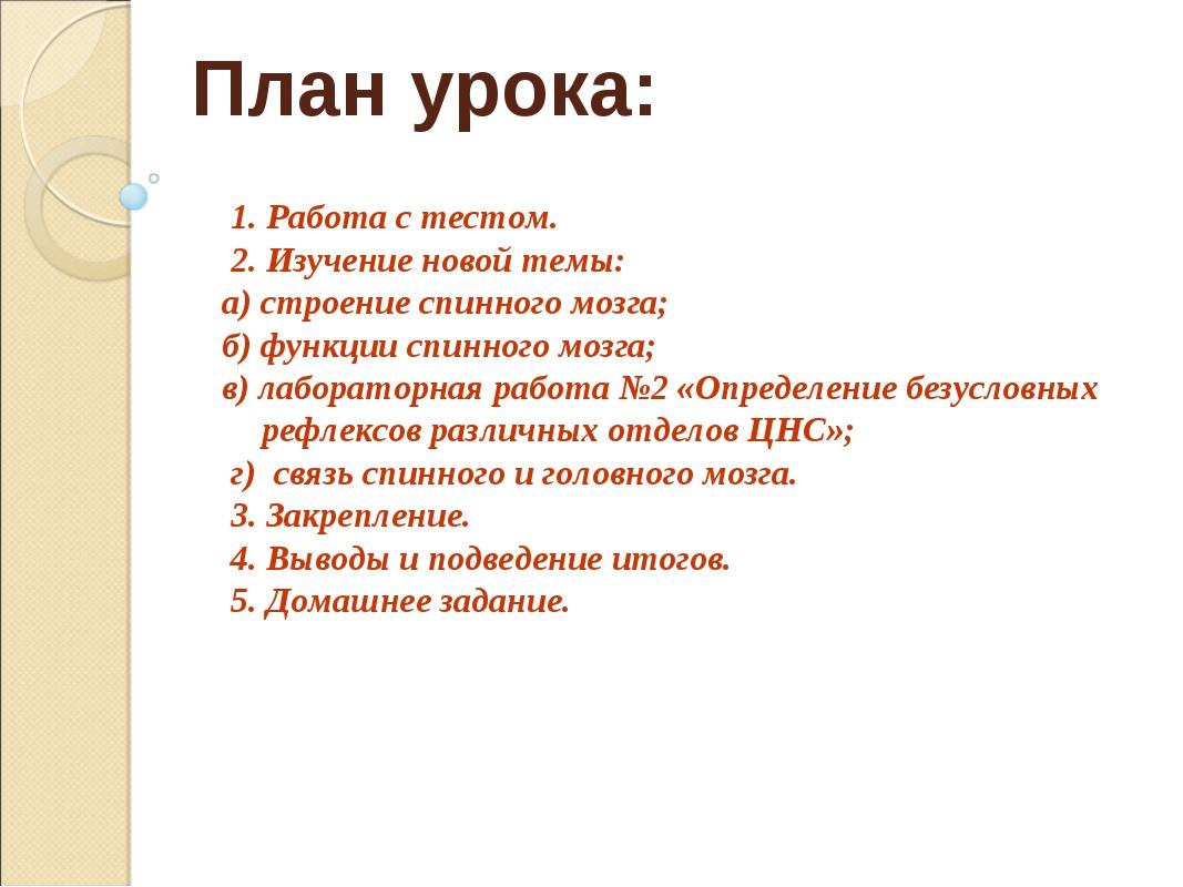 План урока: 1. Работа с тестом. 2. Изучение новой темы: а) строение спинного...
