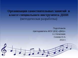 Организация самостоятельных занятий в классе специального инструмента ДШИ (ме