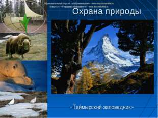 Охрана природы «Таймырский заповедник» Образовательный портал «Мой университе