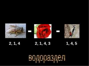 - - 2, 1, 4 2, 1, 4, 3 1, 4, 5