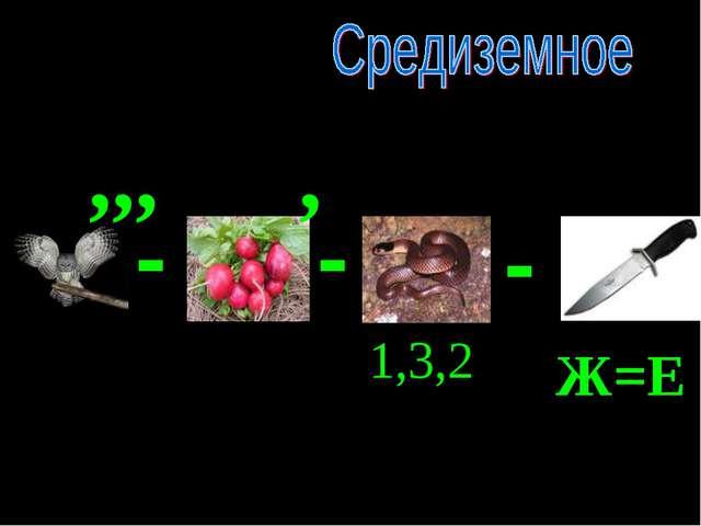 - - - ,,, , 1,3,2 Ж=Е