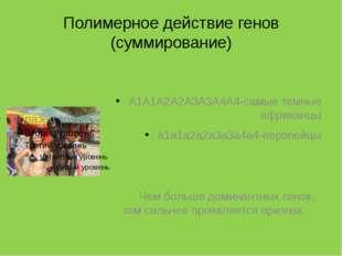 Полимерное действие генов (суммирование) А1А1А2А2А3А3А4А4-самые темные африка