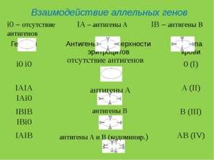 IA – антигены A IB – антигены B i0 – отсутствие антигенов Взаимодействие алле