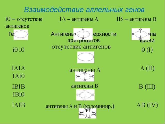 IA – антигены A IB – антигены B i0 – отсутствие антигенов Взаимодействие алле...
