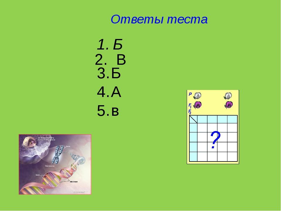Ответы теста Б Б А в 2. В