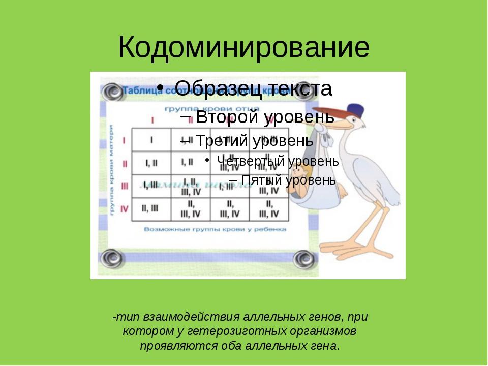 Кодоминирование -тип взаимодействия аллельных генов, при котором у гетерозиго...
