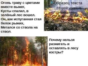 Огонь траву с цветами вместе выжег, Кусты спалил, в зелёный лес вошел. Он, ка