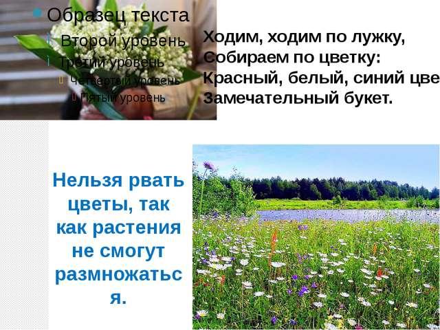 Ходим, ходим по лужку, Собираем по цветку: Красный, белый, синий цвет… Замеча...