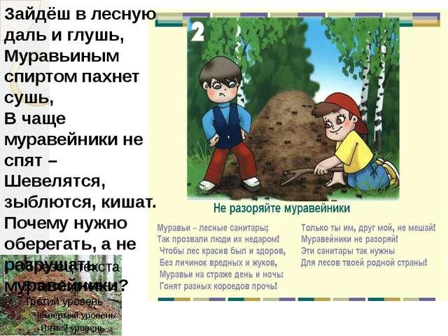 Зайдёш в лесную даль и глушь, Муравьиным спиртом пахнет сушь, В чаще муравейн...