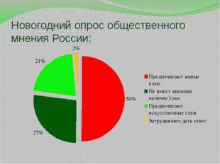 Новогодний опрос общественного мнения России: