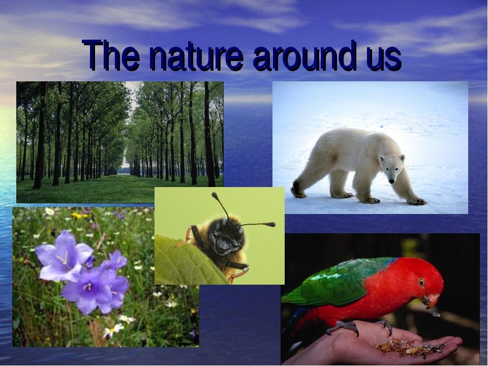 The nature around us