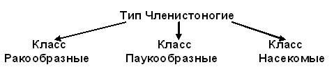 hello_html_m42f4cb4a.jpg