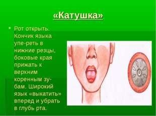 «Катушка» Рот открыть. Кончик языка упереть в нижние резцы, боковые края при