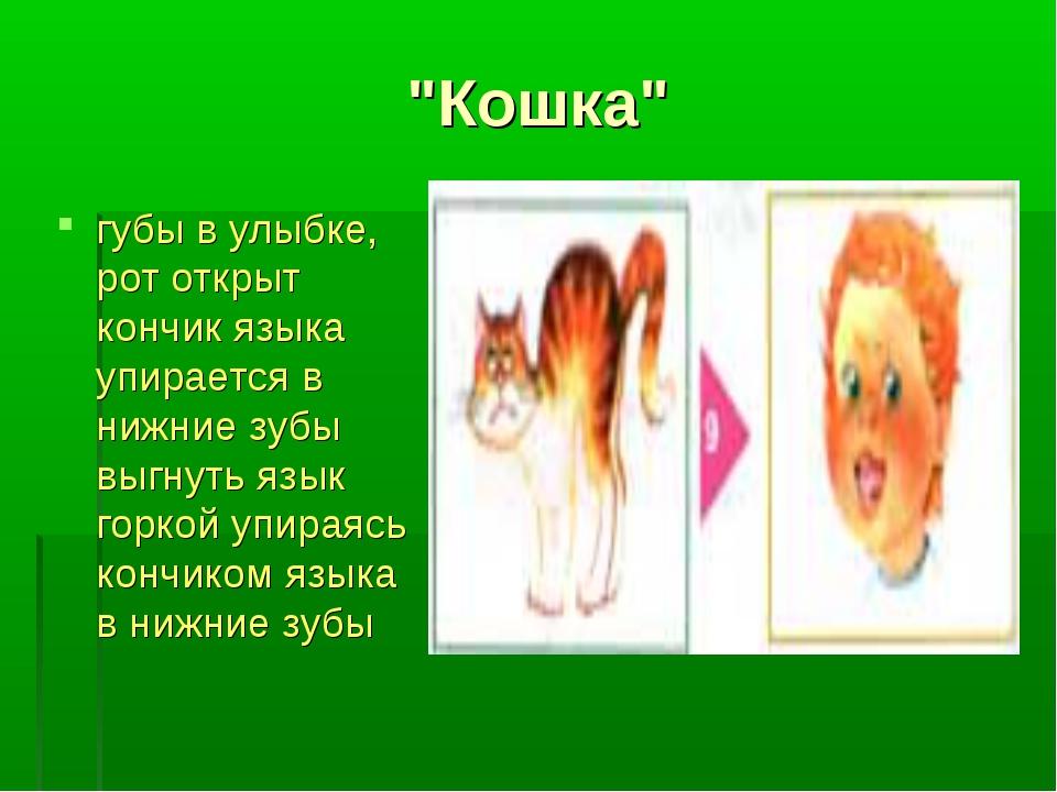 """""""Кошка"""" губы в улыбке, рот открыт кончик языка упирается в нижние зубы выгнут..."""