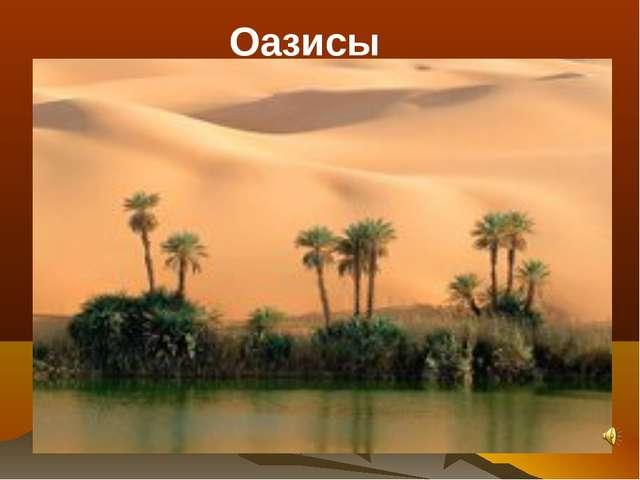 Конечно, самые желанные и самые живописные места в пустыне - оазисы. Образуют...