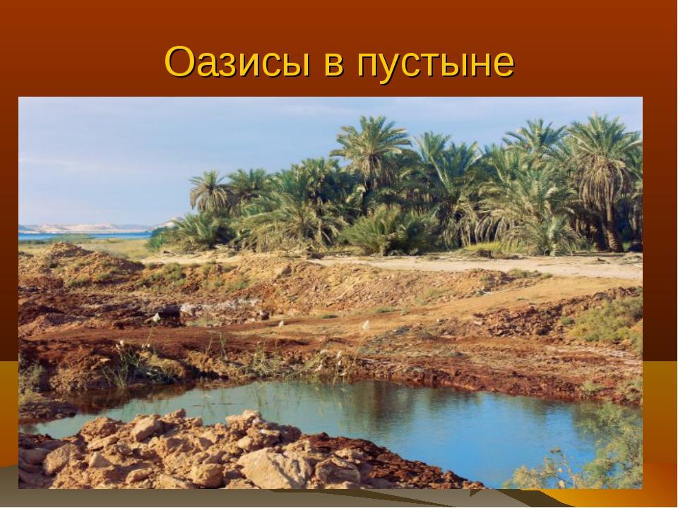 Оазисы в пустыне Оазис – это участок пустыни с обильным естественным или иску...
