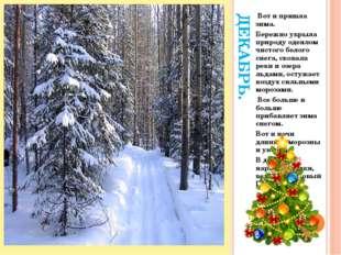 ДЕКАБРЬ. Вот и пришла зима. Бережно укрыла природу одеялом чистого белого сне