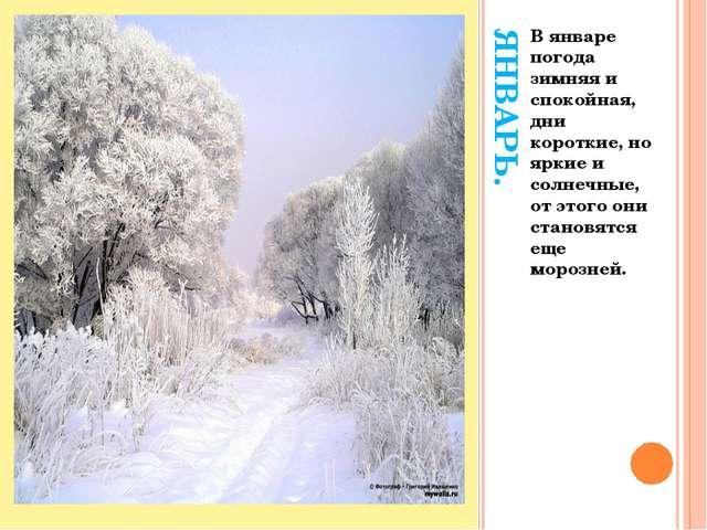 ЯНВАРЬ. В январе погода зимняя и спокойная, дни короткие, но яркие и солнечны...