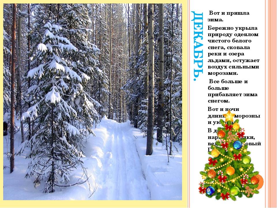 ДЕКАБРЬ. Вот и пришла зима. Бережно укрыла природу одеялом чистого белого сне...