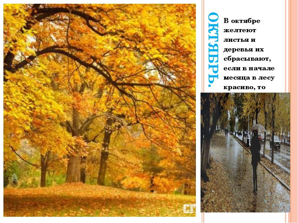 ОКТЯБРЬ. В октябре желтеют листья и деревья их сбрасывают, если в начале меся...