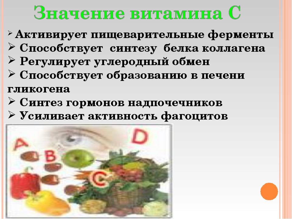 Активирует пищеварительные ферменты Способствует синтезу белка коллагена Рег...