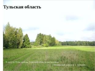 Тульская область К югу от Тулы центра Тульской области расположен Щекинский р