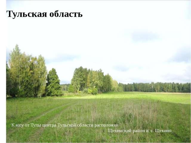 Тульская область К югу от Тулы центра Тульской области расположен Щекинский р...