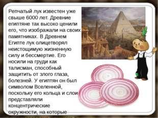Репчатый лук известен уже свыше 6000 лет. Древние египтяне так высоко ценили