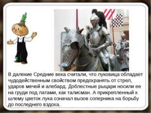 В далекие Средние века считали, что луковица обладает чудодейственным свойств