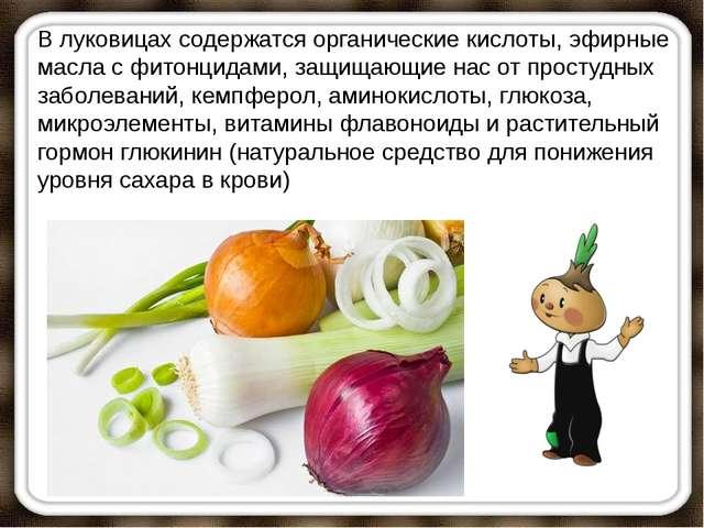 В луковицах содержатся органические кислоты, эфирные масла с фитонцидами, защ...
