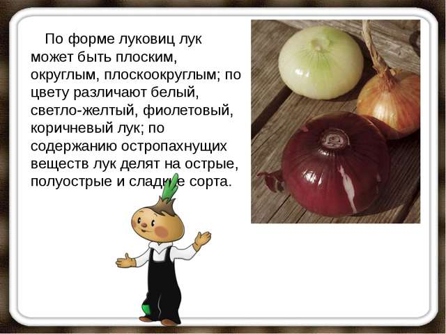 По форме луковиц лук может быть плоским, округлым, плоскоокруглым; по цве...