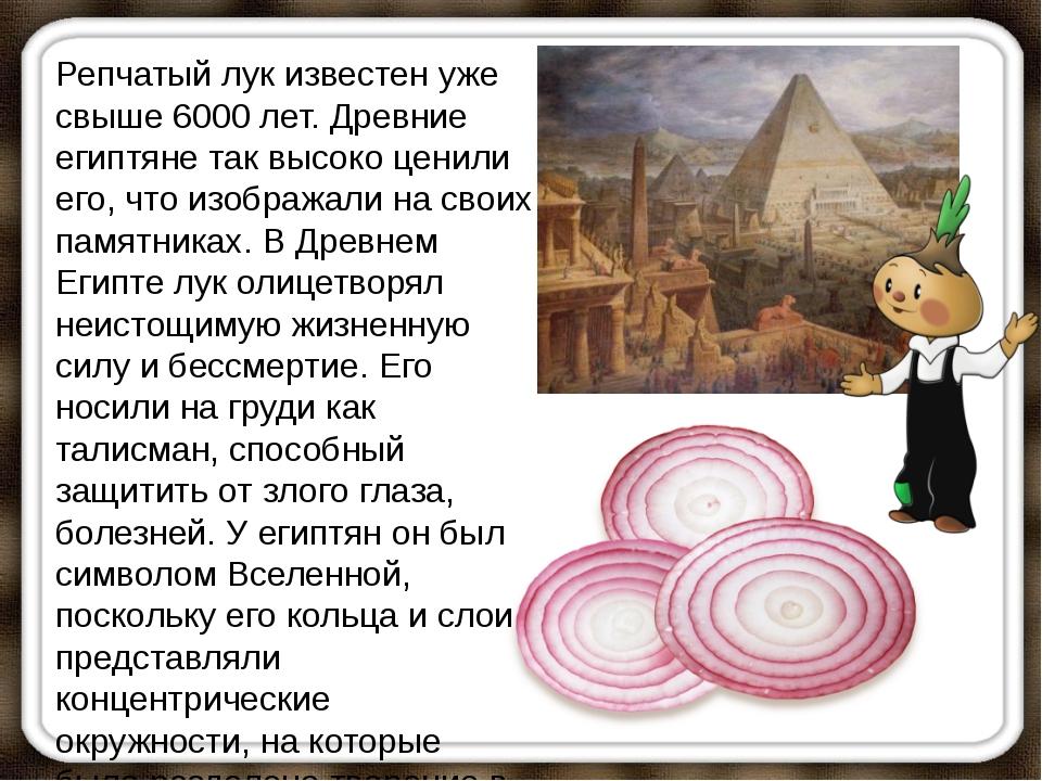Репчатый лук известен уже свыше 6000 лет. Древние египтяне так высоко ценили...