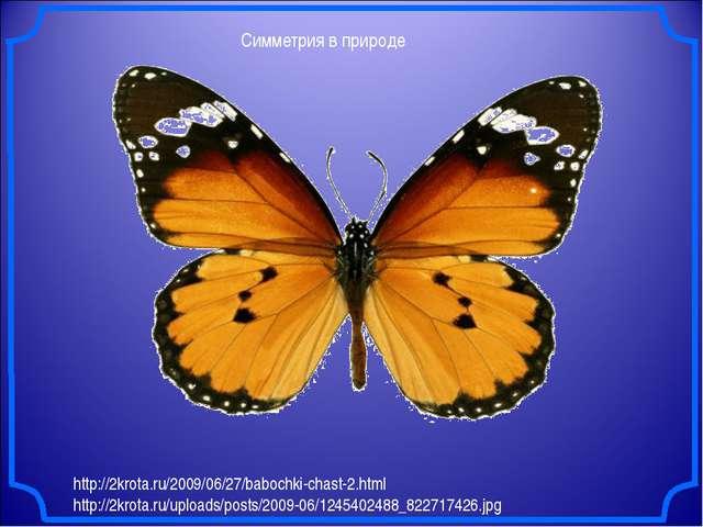 Симметрия в природе http://2krota.ru/2009/06/27/babochki-chast-2.html http://...