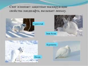Снег изменяет защитные маскирующие свойства ландшафта, вызывает линьку. Горно