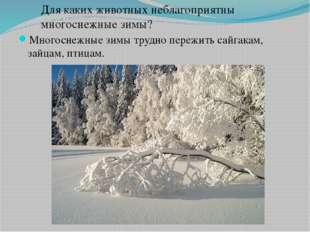 Многоснежные зимы трудно пережить сайгакам, зайцам, птицам. Для каких животны