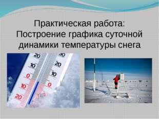 Практическая работа: Построение графика суточной динамики температуры снега