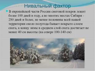Нивальный фактор В европейской части России снеговой покров лежит более 100 д