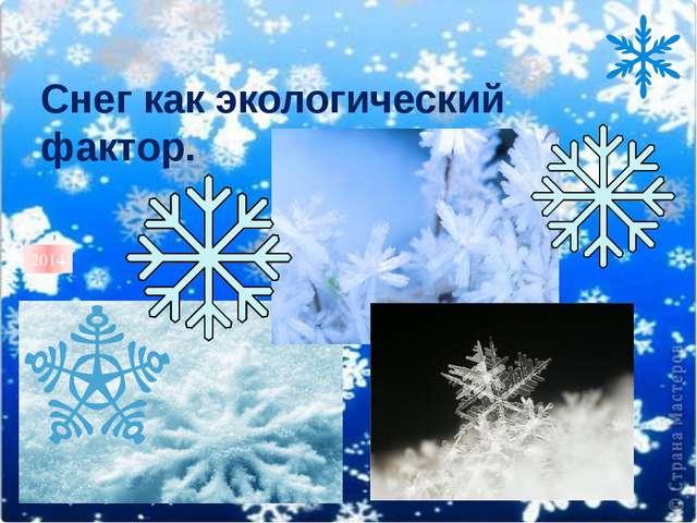 Снег как экологический фактор. 2014