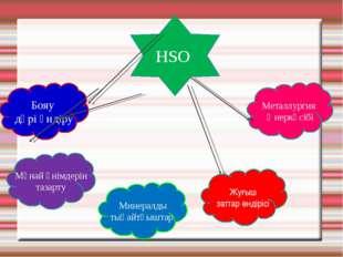 HSO Минералды тыңайтқыштар Бояу дәрі өндіру Жуғыш заттар өндірісі Мұнай өнімд