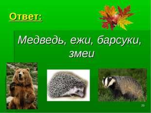 * Ответ: Медведь, ежи, барсуки, змеи