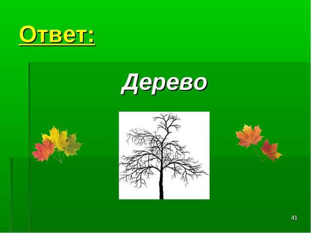 * Ответ: Дерево