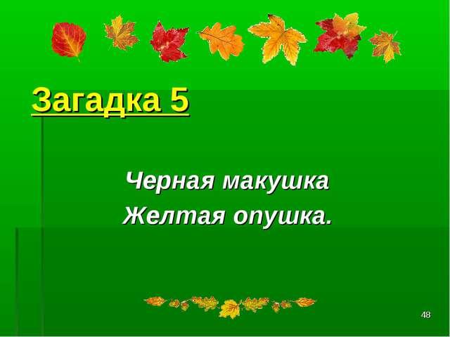 * Загадка 5 Черная макушка Желтая опушка.