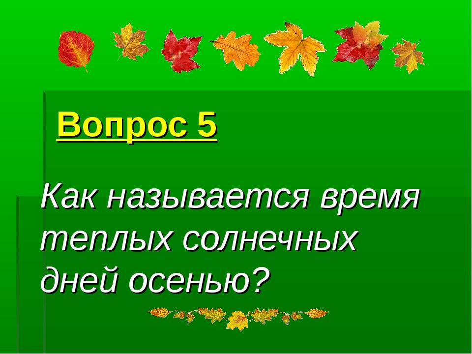 Вопрос 5 Как называется время теплых солнечных дней осенью?